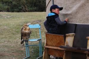 Junge mit Falke