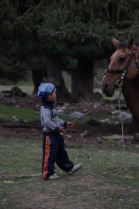 Kleiner Reiter